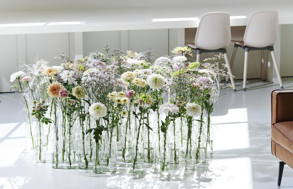 le-chrysantheme-1