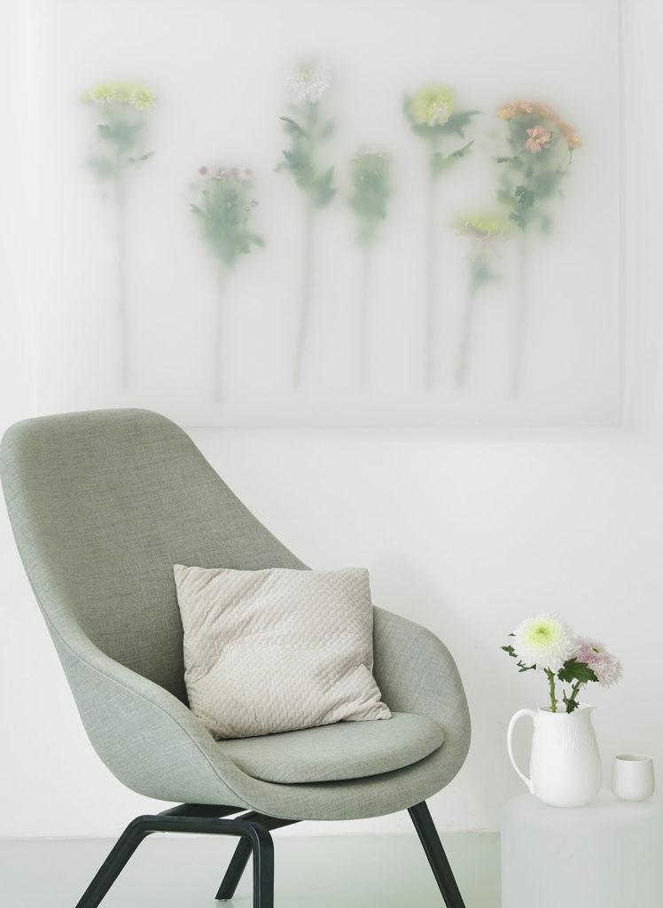 le-chrysantheme-3